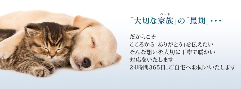 ペットセレモニーWAVY横浜支店